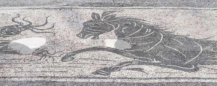 villa livia mosaic