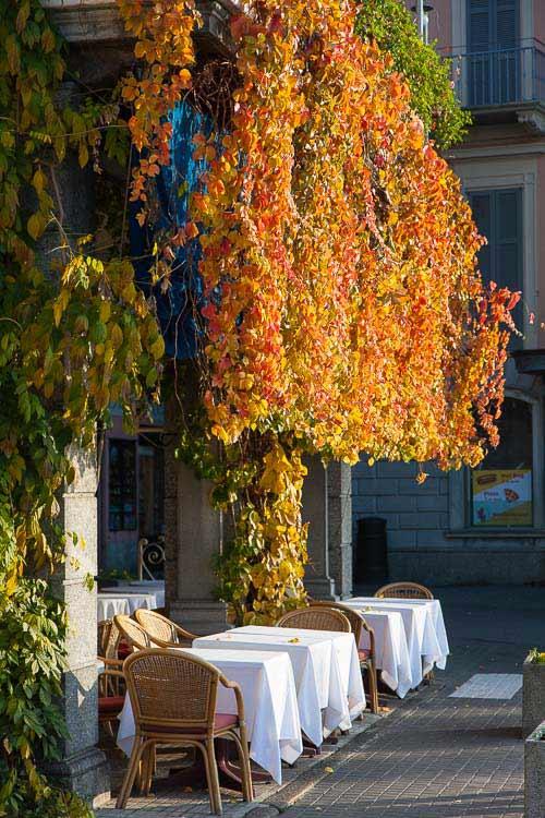 Suisse Hotel and Restaurant