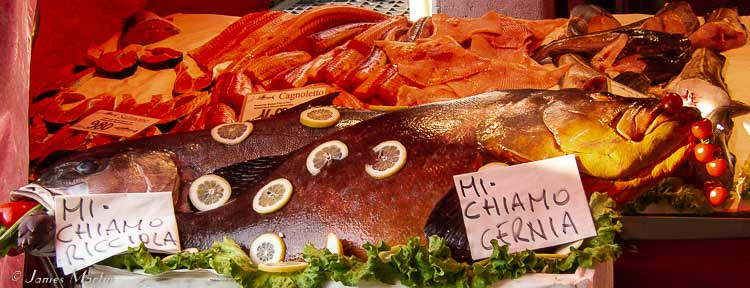 venice fish market display