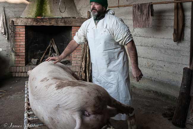 pig butchery