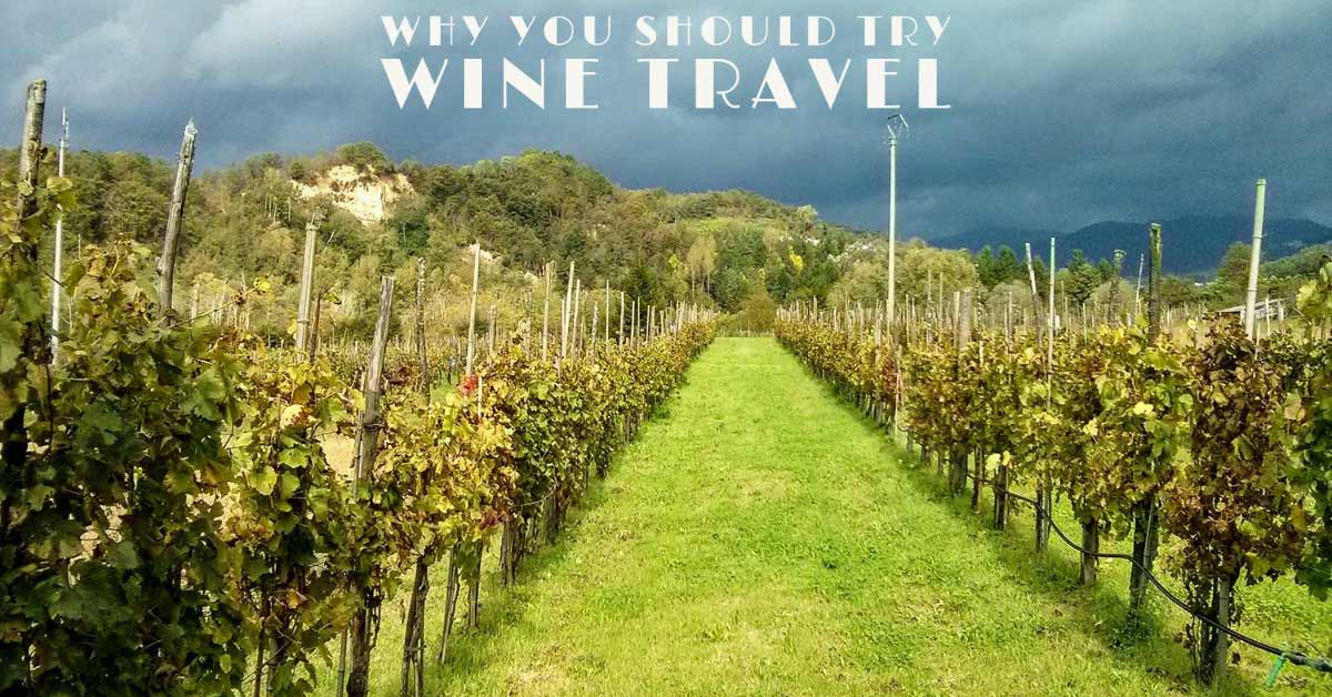 why you should try wine travel