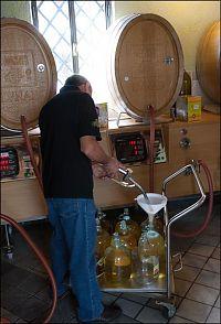 vino sfuso, lunae winery