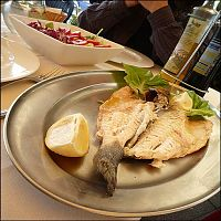 Lerici and a fish