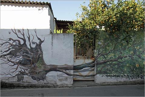 Orange tree mural, san srerato, sardinia