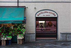 macelleria equina, horse butcher