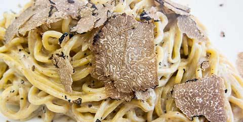 summer truffles scorzone picture